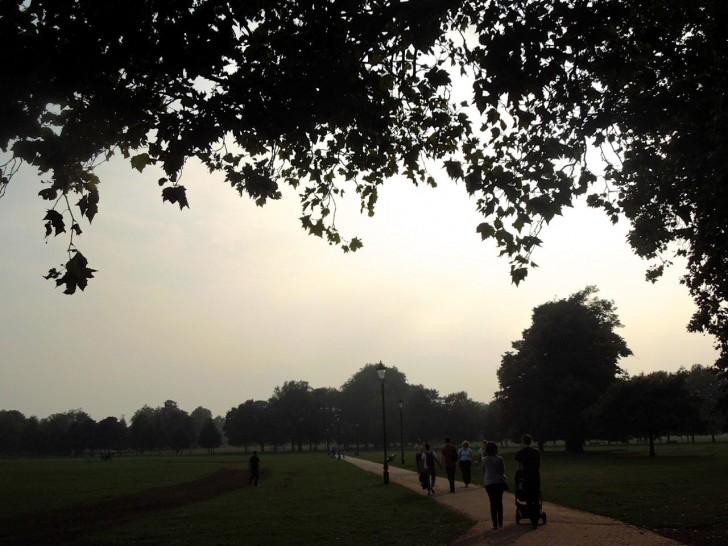 広大な都会の公園クラッパム・コモンを見渡すロケーション
