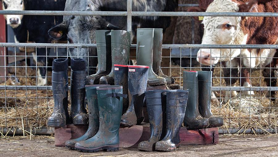 th_Group-of-wellington-boots-jonathan-page